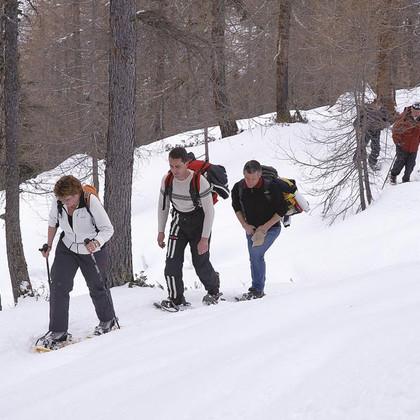 Lazins Winter
