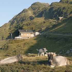 Fleckner Hütte