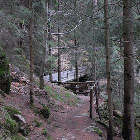 Der Kammerveiter Waalweg